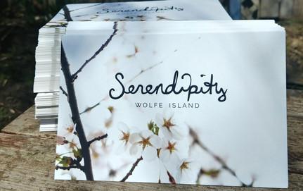 Serendipity, Small Business