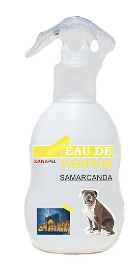 Profumo - Samarcanda