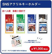 SNSkey.jpg