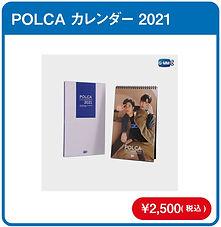 POLCA_2021.jpg