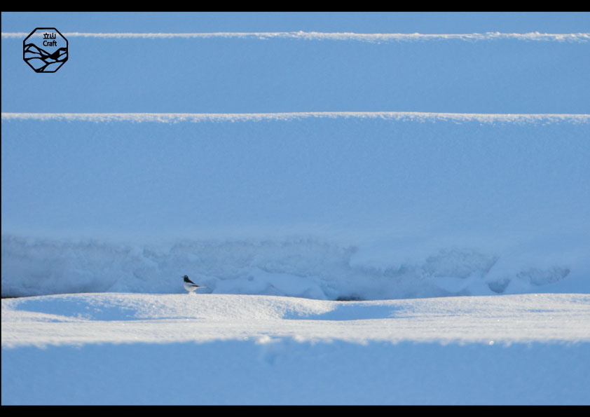 立山の四季 冬 2.jpg