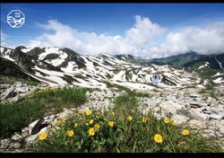 立山の四季 山頂2.jpg