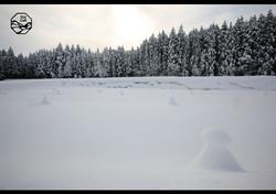 立山の四季 冬 雪景色.jpg