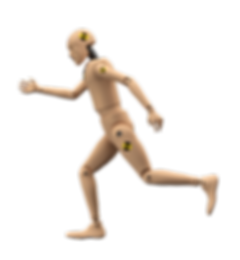Crash Test Dummy Running cut out.png