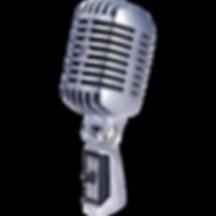 55sh-micro-voix-tete-de-mort-dynamique-c