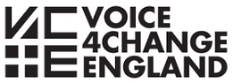 Voice4Change.PNG
