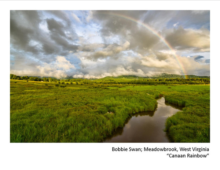 2020 Winners - Bobbie Swan - Canaan Rain