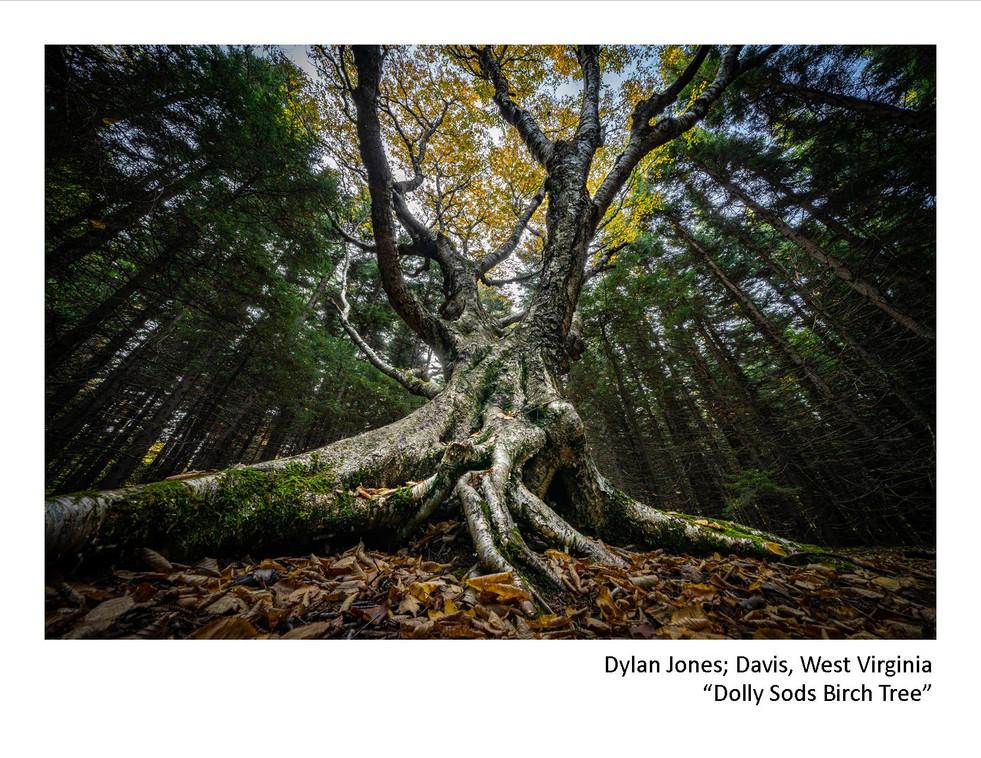 2020 Winners - Dylan Jones - Dolly Sods