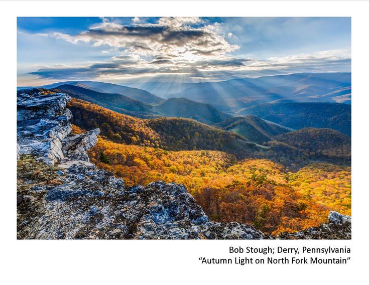 2020 Winners - Bob Stough - Autum Light