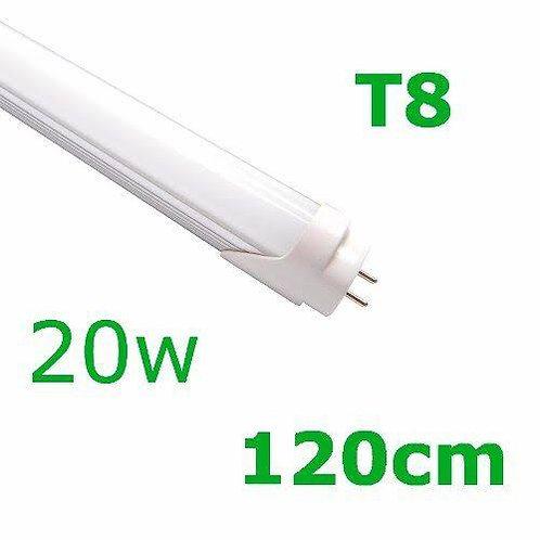 TUBULAR T8 120CM 20W  Bivolt ligação 2 lados