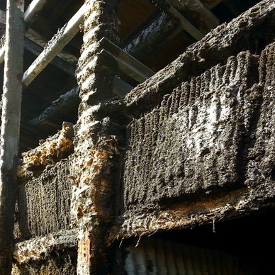 BEFORE - Cooling Tower Fill Replacement