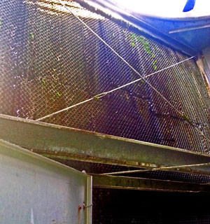 BEFORE -  Cooling Tower Drift Eliminator Replacement
