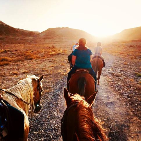IsraTrails half-day sunset ride