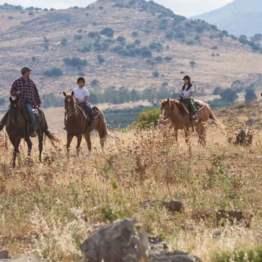 Riding through the beautiful Golan