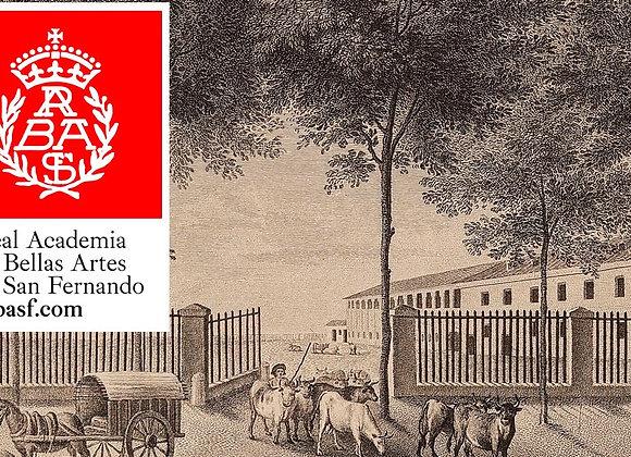 Visita a la Real academia San Fernando