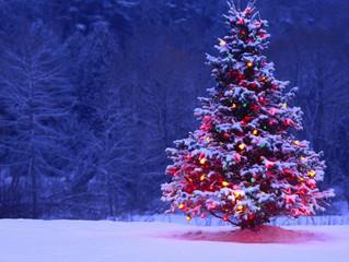 Christmas Site Closure