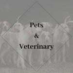 Pet & Veterinary.png