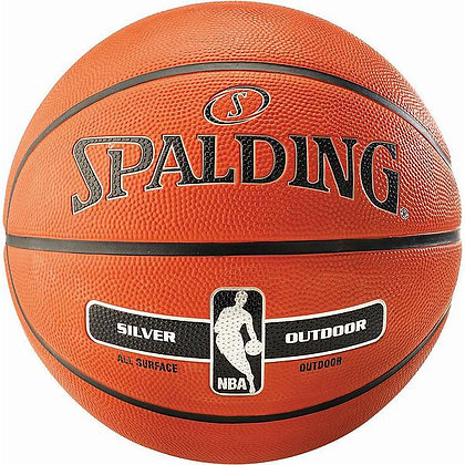 Spalding NBA Silver Outdoor (sizes 3, 5, 6 or 7)