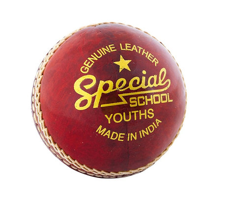 Reader Special Schools Youth ball