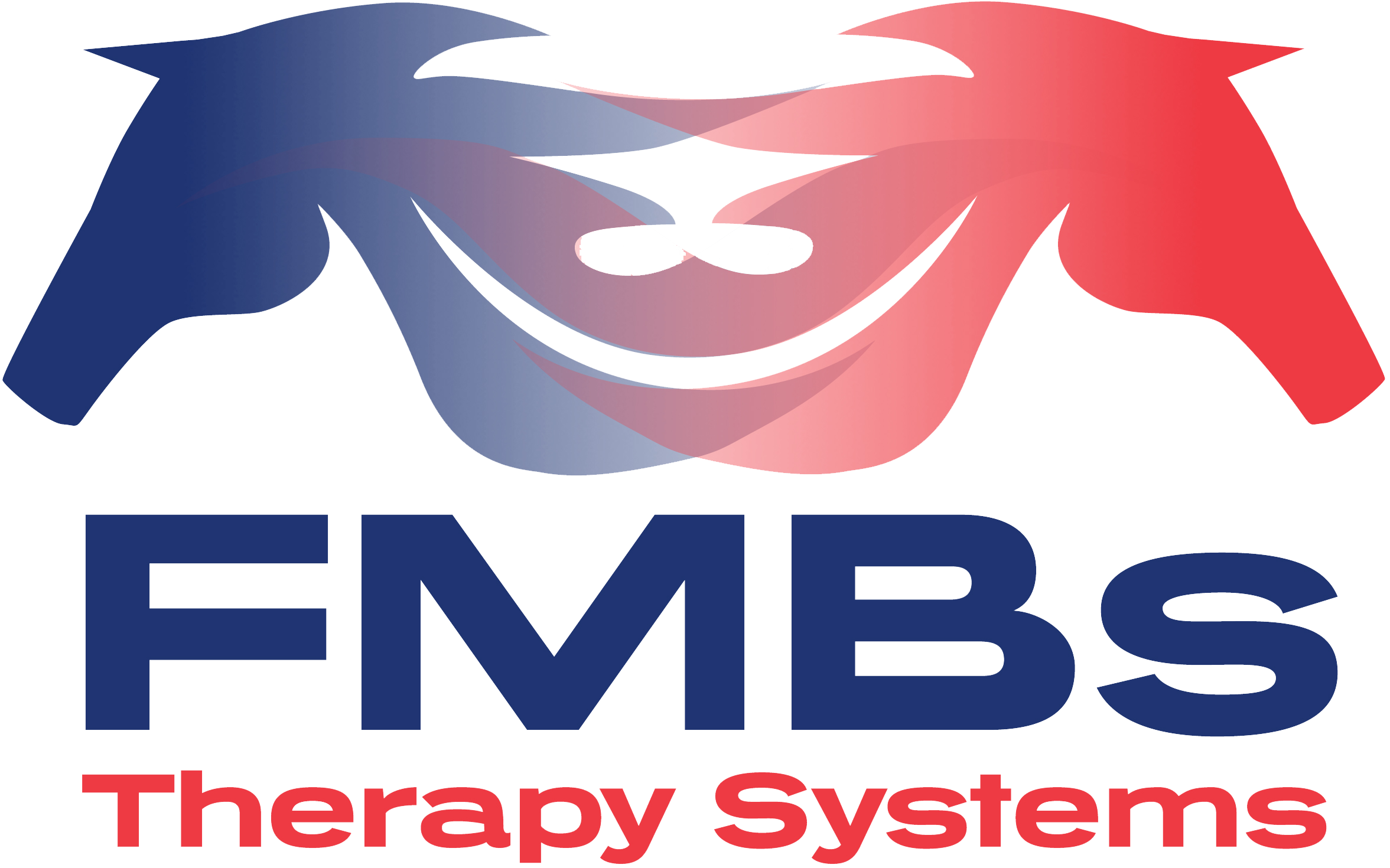 FMB Therapy Systems