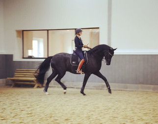 Spring Hill Dressage - Sune Hansen and Emily Ward-Hansen.JPG