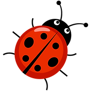 ladybug-01.png