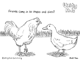 Chicken and Duck