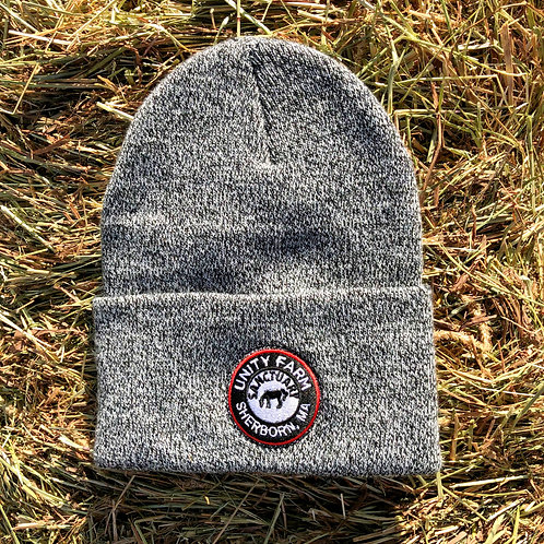 Carhartt Winter Hat with Unity Logo