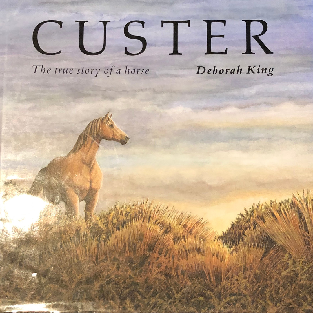 Custer: The True Story of a Horse