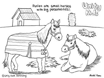 Ponies (1)