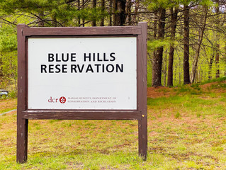 Legislature Passes Budget, Driscoll Secures Earmarks for Milton, Randolph, & Blue Hills Reservation