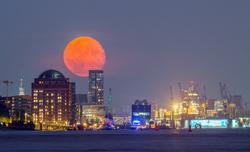 Mondaufgang über dem Hafen