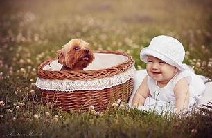 Dog with Baby.jpg