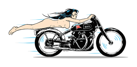 the-naked-racer.png