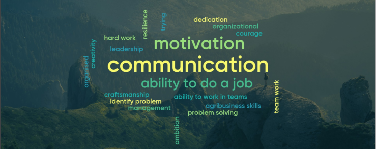 Word cloud with competence in centre