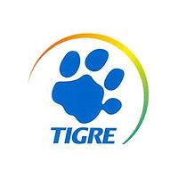 tigre-original.jpg