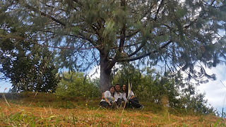 Secundaria el gran pino