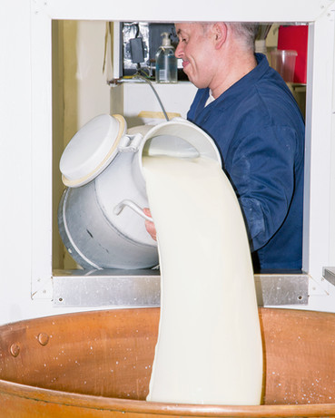 Cheesemaking at Kappacasein Dairy