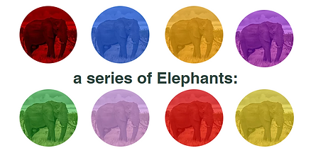 a series of Elephants.PNG