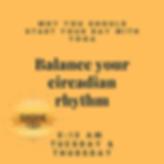 circadian rhythm.png