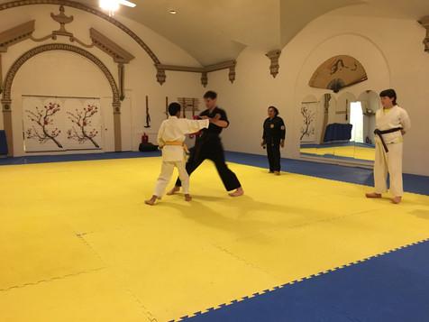Sheboygan Taekwondo