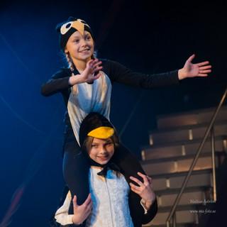cirkus pingviner