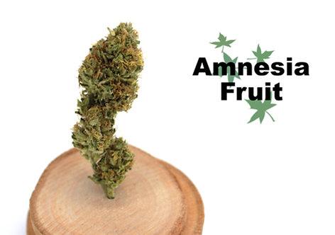 Amnesia Fruit