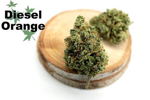 Diesel Orange