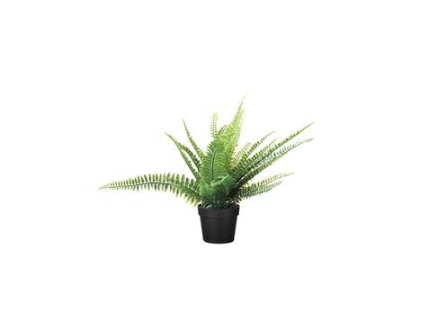 Dirbtinis augalas - papartis €5,00