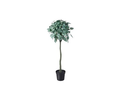 Dirbtinis augalas - eukaliptas €20,00