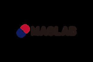 platinum-MAGLAB.png