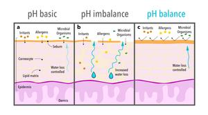 FACELABS pH basic pH imbalance pH balance