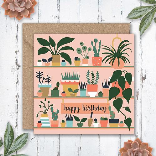 Birthday Potting Plants