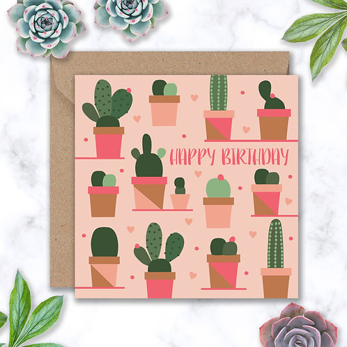 Birthday Cacti and Pots